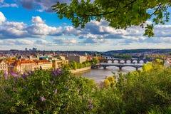prague stary miasteczko Republika Czech nad rzecznym Vltava z Charles mostem na linia horyzontu Praga panoramy krajobrazu widok z zdjęcie royalty free