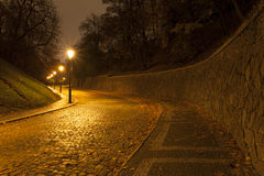 Prague street by night Royalty Free Stock Photos