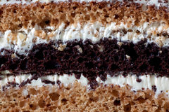 The Prague striped pie with chocolate. Royalty Free Stock Image