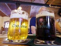 Prague Tjeckien: Lokala öl på restaurangen i Chodovar är royaltyfri fotografi
