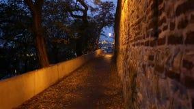 Prague Tjeckien, nattbro, stad, Europa lager videofilmer