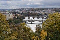 Prague Tjeckien - Oktober 8, 2017: Broar över Moldaen royaltyfria bilder