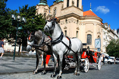Prague - town square with horses for turistic ride and St. Nicho Stock Photo