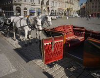 Prague Travel Horse Visit Stock Images
