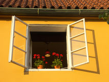 Prague window. Open window in historical Prague Royalty Free Stock Images