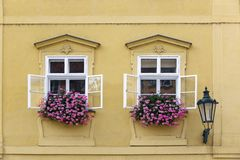 Prague. Window in the old house, decorated with flowering plants.  royalty free stock image