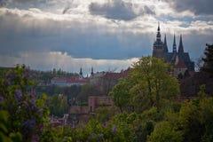 Praha Royalty-vrije Stock Fotografie