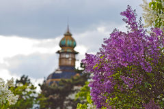 Praha Royalty-vrije Stock Foto's