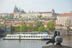 Praha Royalty-vrije Stock Afbeelding