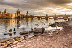 Praha Karluv het meest, Charles-brugzonsondergang Praag Tsjech, zonreeks, Vltava-rivier Stock Afbeelding
