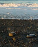 Praia áspera Fotografia de Stock