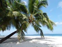 Praia #01 Fotografia de Stock Royalty Free