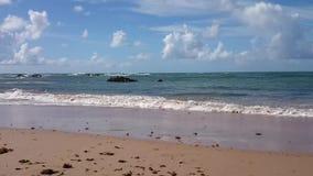 Praia video estoque