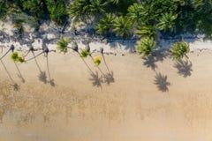 Praia aérea com palmeiras, o oceano azul de turquesa e a areia branca Capa de revista para o curso, estilo de vida, forma fotos de stock royalty free