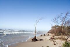 Praia abandonada Foto de Stock