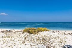 Praia abandonada Imagem de Stock Royalty Free