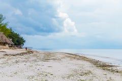 Praia abandonada do oceano com uma figura só na distância foto de stock