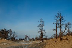 Praia abandonada na ilha de Olkhon do Lago Baikal fotos de stock royalty free