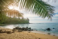 Praia abandonada Phuket, Tailândia Fotos de Stock Royalty Free
