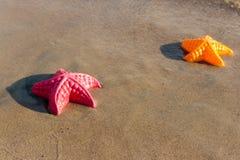 A praia acena a estrela do mar e brinquedos coloridos Fotos de Stock