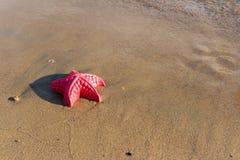 A praia acena a estrela do mar e brinquedos coloridos Fotografia de Stock Royalty Free