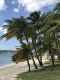 Praia agradável em St Martin Foto de Stock