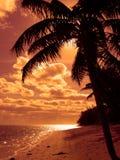 Praia alaranjada brilhante Fotografia de Stock
