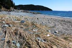 Praia arenosa abandonada foto de stock