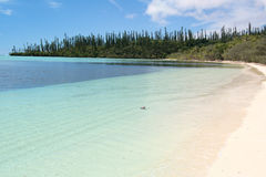 Praia arenosa branca Foto de Stock