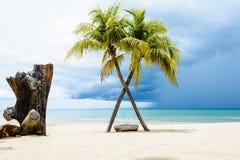Praia bonita com palmas Foto de Stock Royalty Free
