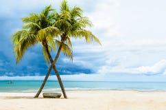 Praia bonita com palmas Imagem de Stock