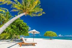 Praia bonita com palmeiras e o céu temperamental Conceito do fundo do feriado do curso das férias de verão imagem de stock royalty free