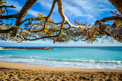 Praia bonita de Mônaco Fotos de Stock