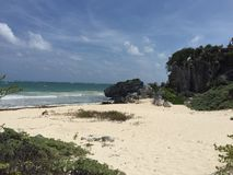 Praia bonita de Tulum! Fotos de Stock Royalty Free