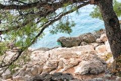 Praia bonita do mar de adriático com o sol e os pinheiros verdes imagens de stock royalty free