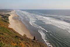 Praia bonita em Califórnia Foto de Stock Royalty Free