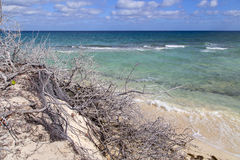 A praia bonita em Cuba Fotos de Stock