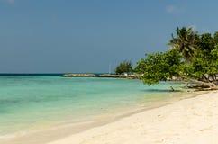 Praia bonita em Maldivas com árvores tropicais, a areia branca e o céu azul Destino dos feriados Fotografia de Stock