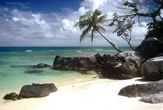 Praia bonita, Madagascar Imagem de Stock Royalty Free