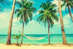 Praia bonita Rede entre duas palmeiras na praia H Fotos de Stock Royalty Free