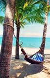 Praia bonita Rede entre duas palmeiras na praia Ho Fotografia de Stock Royalty Free