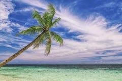 Praia bonita Vista da praia tropical agradável com palmas ao redor Conceito do feriado e das férias Beachat tropical fotos de stock royalty free