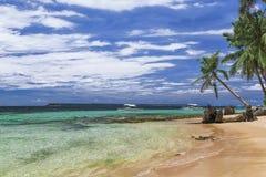 Praia bonita Vista da praia tropical agradável com palmas ao redor Conceito do feriado e das férias Beachat tropical fotografia de stock