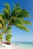Praia Bornéu de Indonésia Imagens de Stock