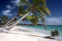 Praia branca bonita, Madadascar fotografia de stock royalty free