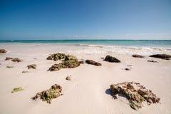 Praia branca da areia, coral e mar das caraíbas de turquesa Playa del Carmen, México fotografia de stock royalty free
