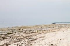 Praia branca da ilha da especiaria do Oceano Índico de Zanzibar Unguja, Tanzânia Foto de Stock