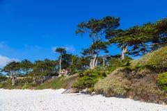 Praia branca no Carmel-por--mar, Califórnia, EUA imagens de stock