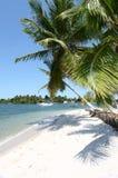 Praia branca tropical da areia Imagem de Stock