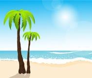 Praia branca tropical perfeita da areia com palmeiras Imagens de Stock